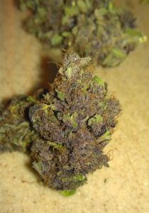 Buy Purple Diesel Marijuana Strain