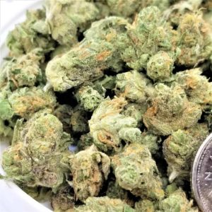 Buy Alien OG Medical Strain
