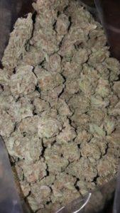 Buy Berry White Cannabis Strain