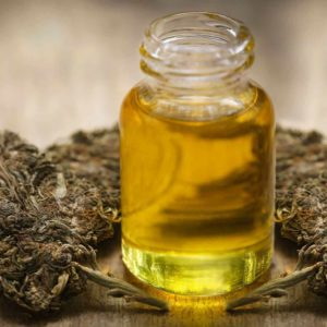 Buy Brandywine Cannabis Oil