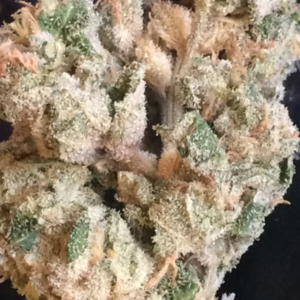 Dutch Dragon Cannabis Strain