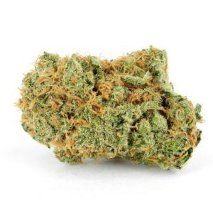 Mango Haze Cannabis Strain