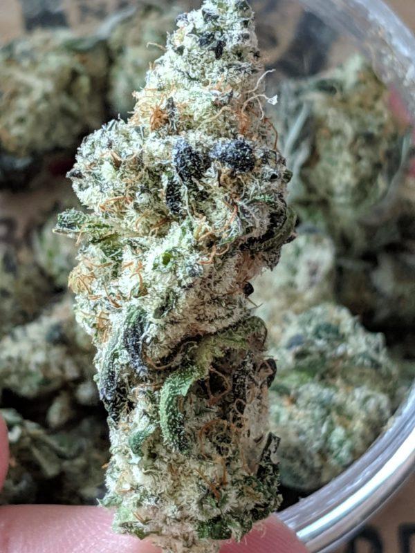 Marijuana Iceland